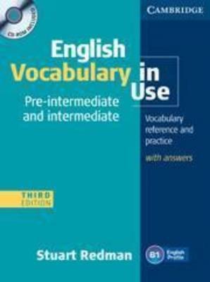English Vocabulary in Use (Pre-intermediate and Intermediate)
