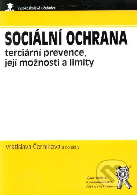 Sociální ochrana - terciární prevence, její možnosti a limity